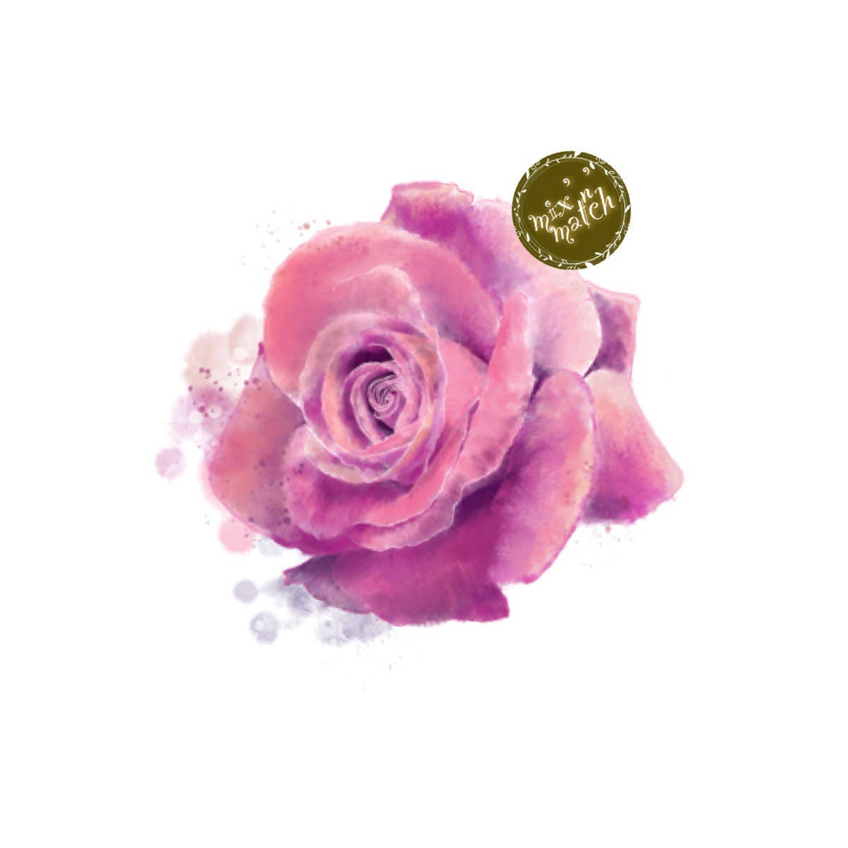 Digital Rose Flower Watercolour Clipart Pink Purple Peach Orange