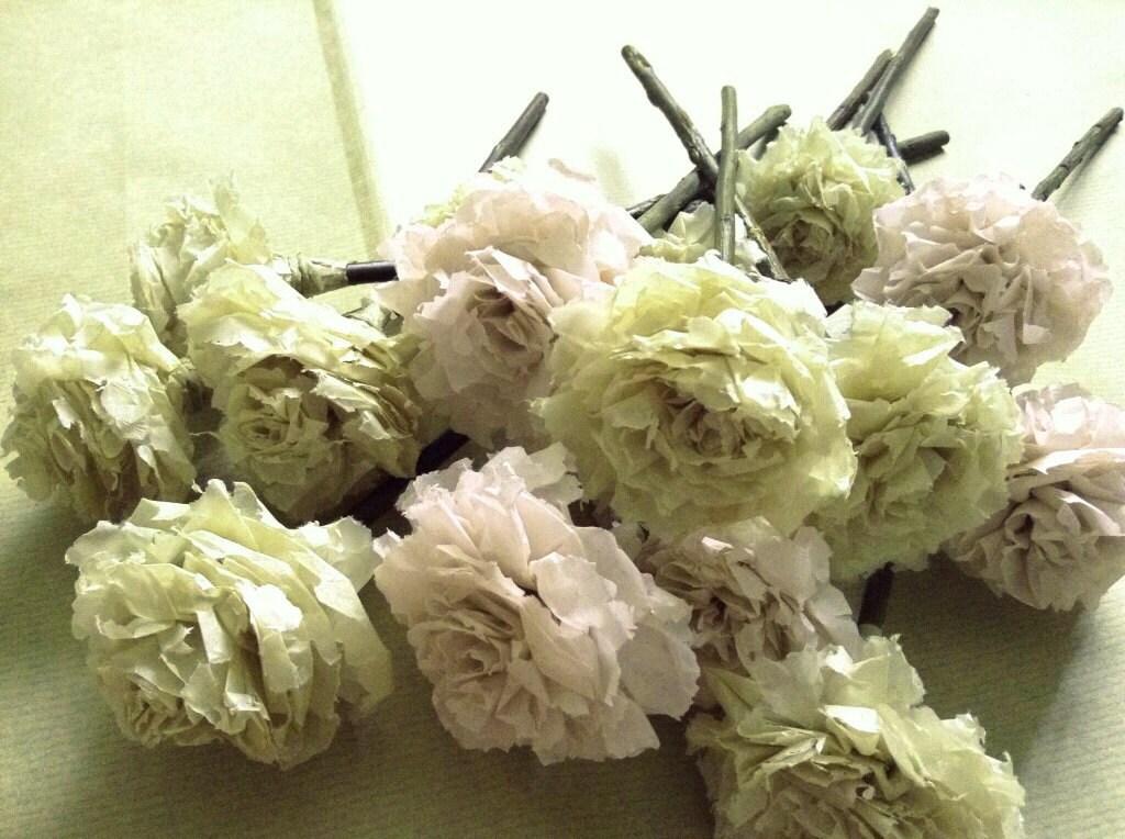 75f8cebf6099 Blush Celery Green Tissue Paper Pom Pom Flower Wooden Sticks ...