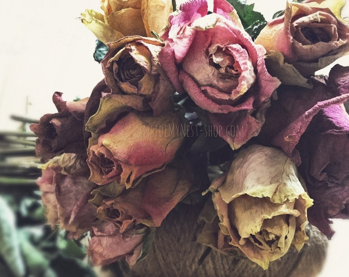 Featured listing image: Dried Flower Bouquet Rose Stems Vintage Shabby Chic Home Decor Wedding 100% Natural Dusty Pink Blush Floral Arrangements (Bunch of 12)