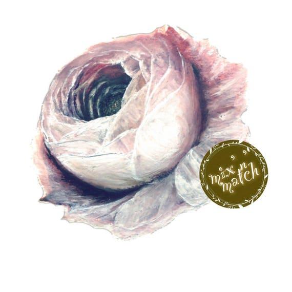 Blush Indigo Rose Flower Watercolour Clipart Vintage Digital Instant Download PNG 300dpi Transparent Background DIY Wedding Invitation
