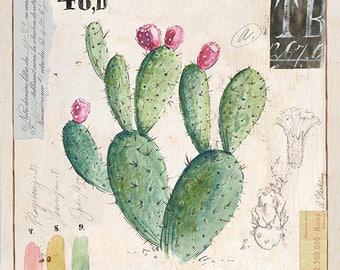 Prickly Pear Cactus Print, Cactus Illustration, Cactus Art, Cactus Decor, Cactus Wall Art, Prickly Pear Cactus
