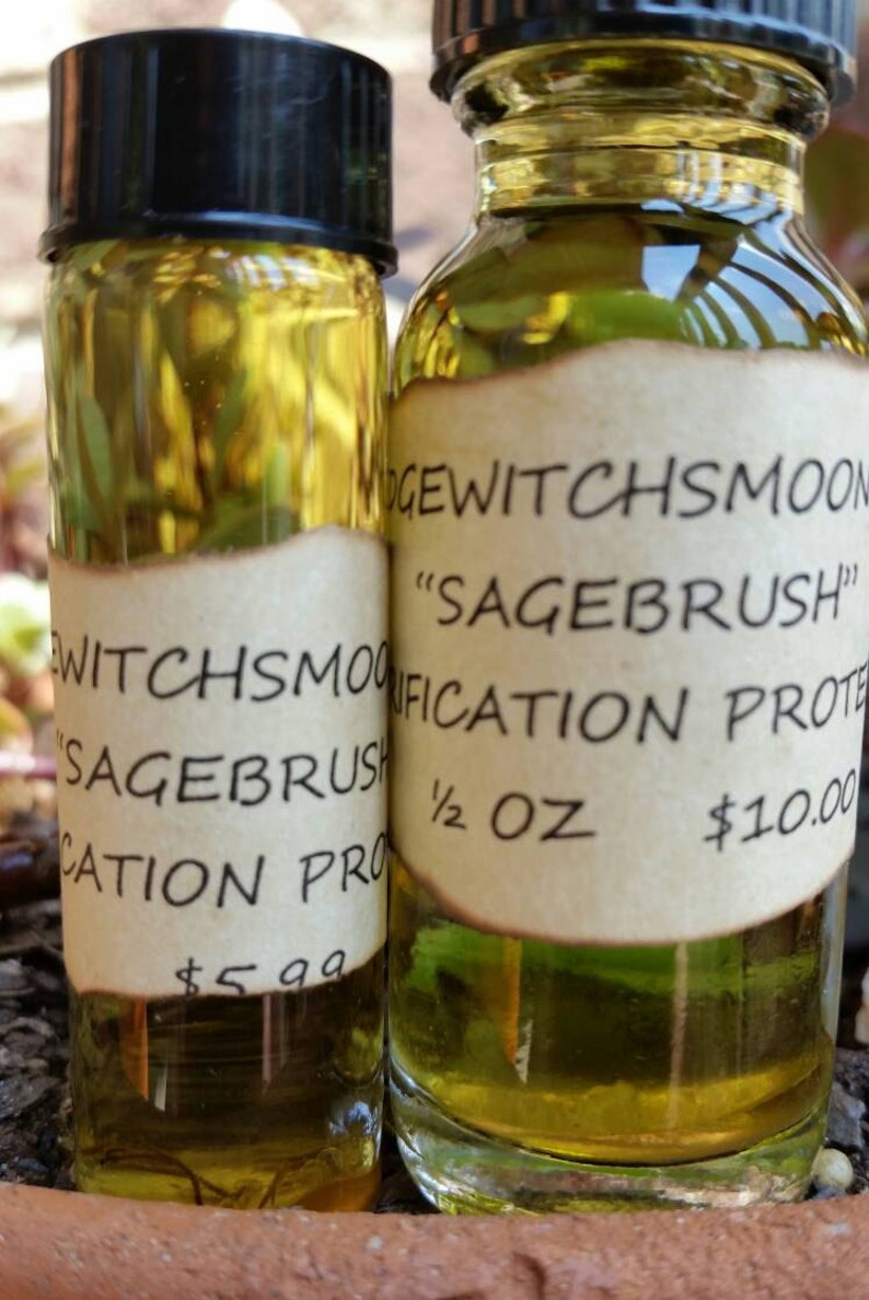 Sagebrush Ritual Oil  Witch Crafted  Grown In My Herb Garden  Protection   Purification  Use For Smudging and Consecration of Tools/Spaces