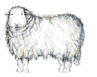 Limited edition print - Maisie the Herdwick sheep, sheep print, Herdwick print, Herdwick art