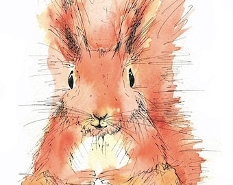 Limited edition print - Jasper Red Squirrel, red squirrel print, squirrel print