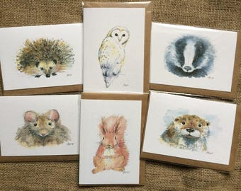 Pack of six mixed British wildlife greetings cards, wildlife cards, animal cards
