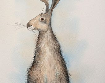 Small hare original watercolour painting, hare painting, rabbit picture, hare watercolour, sitting hare