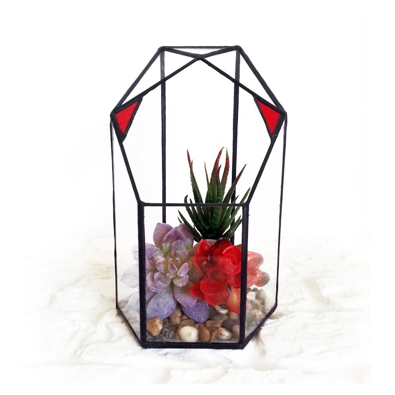 Geometric Glass Jewelry Box Tabletop Succulent Plants Container Favors