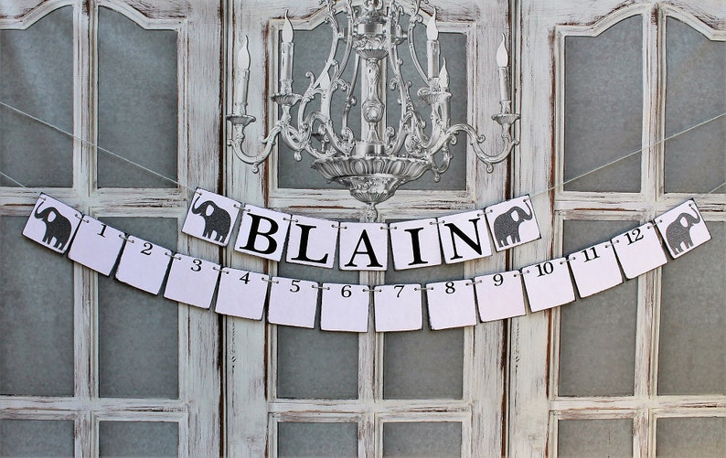 1 to 12 months pictures mEMORY kEEPER -Name Signs Baby Pictures Rustic Baby Shower Signs BABY PHOTOS Sign and NAME Banner