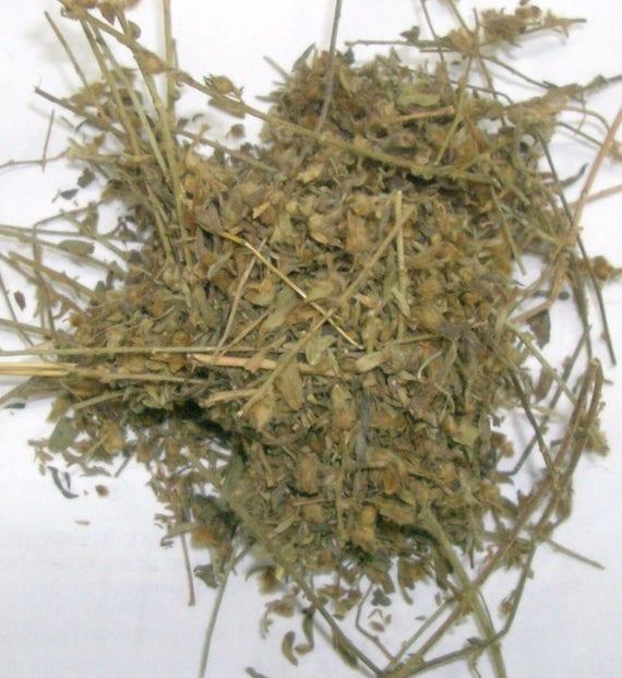 100/% Natural Ruta Graveolens Rue Herb//Rue Herbe Tisane - Health Embassy 50g
