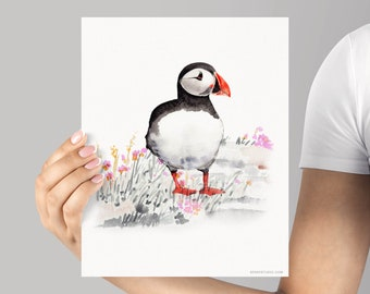Art Print Puffin Bird watercolor Giclée, frame Not included, Watercolour archival print, Cute Puffin Bird watercolour giclée, High Quality