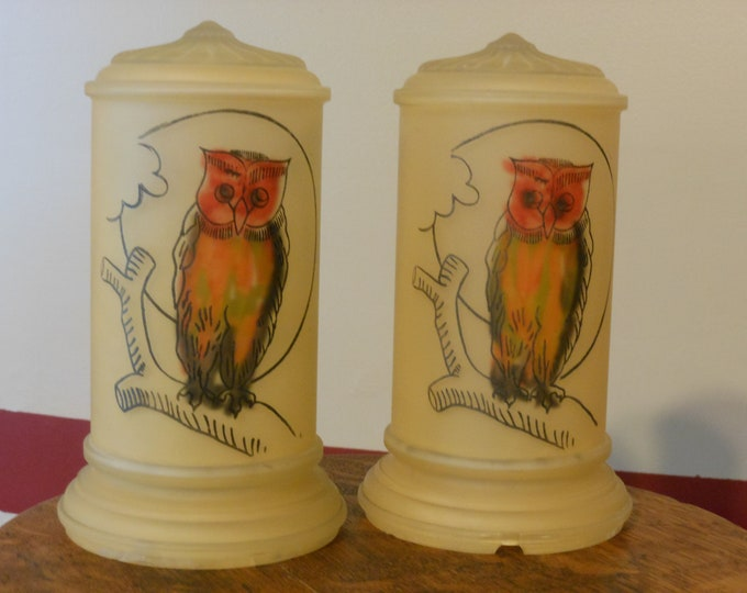 Two Antique Hand Painted Owl Lamp Globes