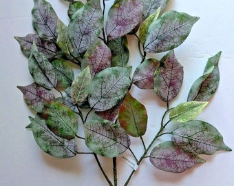 """27"""" FROSTED ficus branch"""