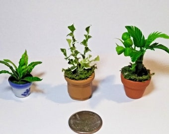 3 Thimble Miniature clay plants