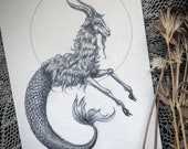 Capricorn- Original Graph...