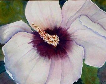 Original watercolor painting, Hibiscus painting, floral painting, watercolor, 11x15