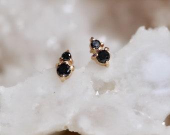 14K Gold Black Diamond Duo Stud