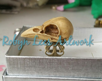 Large Antiqued Resin Raven Crow Bird Skull Adjustable Ring with Bronze Filigree, Gothic Anatomy, Victorian Anatomical