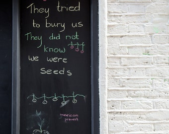 Neals Yard Photography - Chalkboard Messages - Square Print - London Photo - Mexican Proverb - We Were Seeds