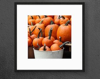 Pumpkin Print - Kitchen Wall Art - Halloween, Fall - Square Photography Print