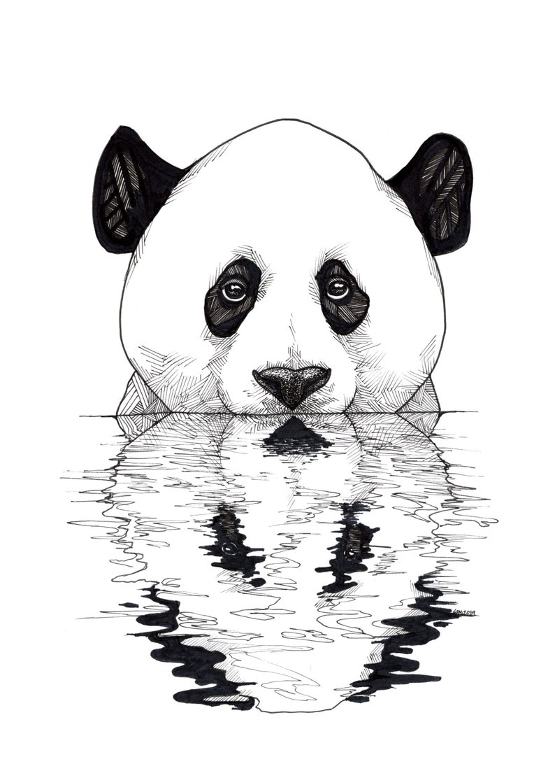 Panda Art  Panda Prints  Panda Drawings  Art Prints  Bear image 1