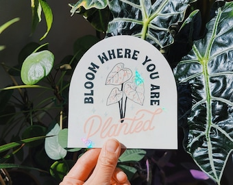 Bloom Where You Are Planted • Suncatcher