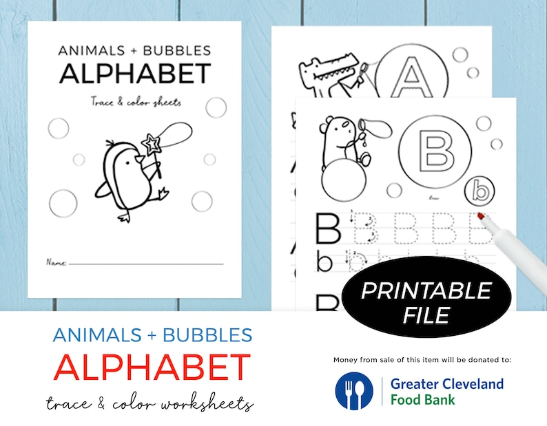 Traceable Alphabet Worksheets/ Alphabet Tracing Letters image 0