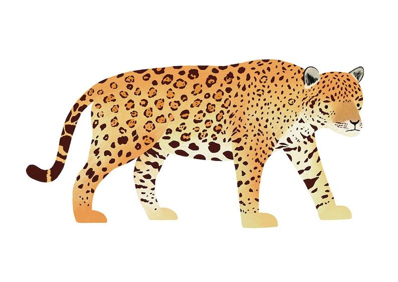 ec2b791184f Jaguar Postcard South American Jungle Animal Big Cat