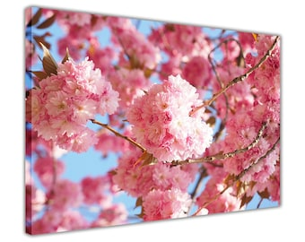 X1835 Cherry Blossom Tree branches Floral Art Print Poster Print