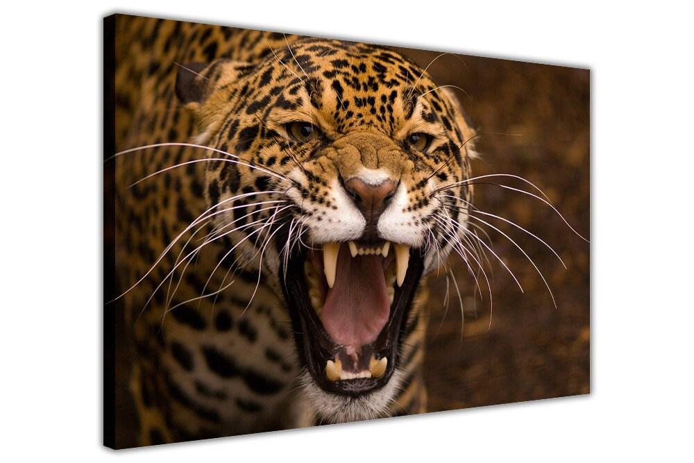 Leopard auf gerahmte Leinwand Wand Kunst Bilder Home | Etsy