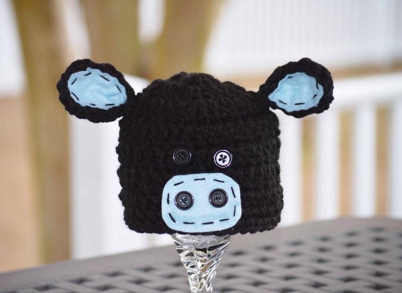 b674c80623a Black angus cow hat angus cow hat angus hats angus cow