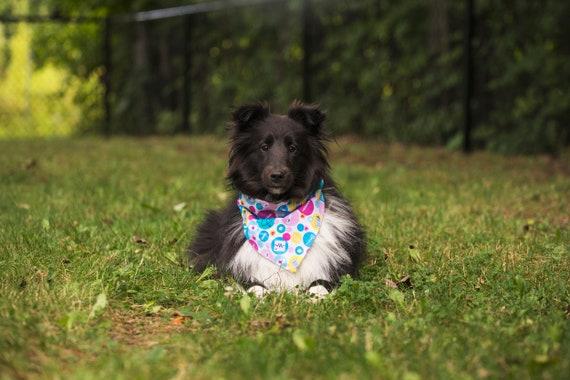 Birthday Dog Personalized Dog Bandana Cat Bandana Dog scarf Pet Accessories