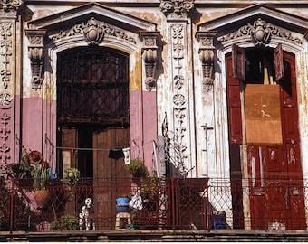 Dog on Balcony, Old Havana, Cuba Signed Art Print / Cuban Architecture / Havana Colour Dog Print