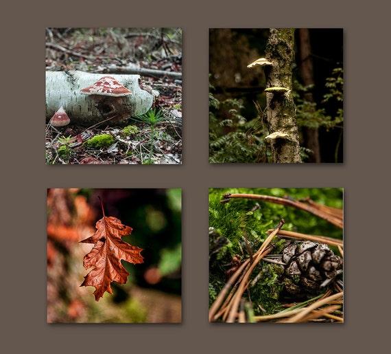 Fall Decor Set, Set of 4 Fine Art Prints, Fall Home Decor, Autumn Wall Art, Autumn Art Set, Brown, Green, Red, 5x5 inch, Save 50%
