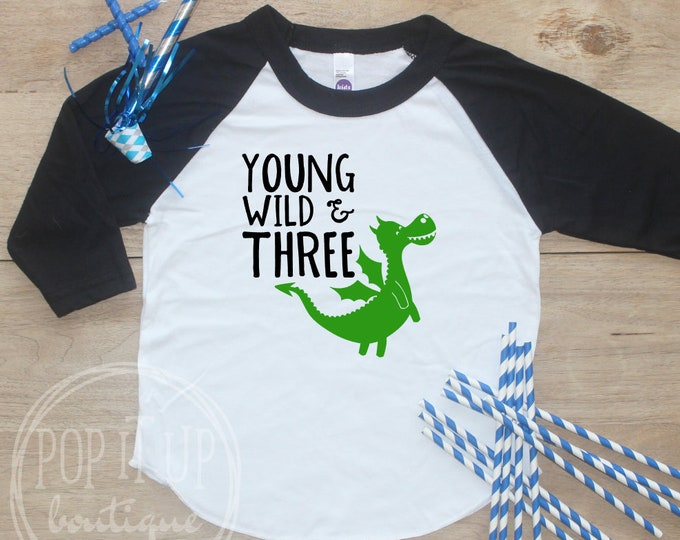 Young Wild Three Dragon Birthday Boy Shirt / Baby Boy Clothes 3 Year Old Outfit Third Birthday TShirt 3rd Birthday Party Outfit Raglan 332