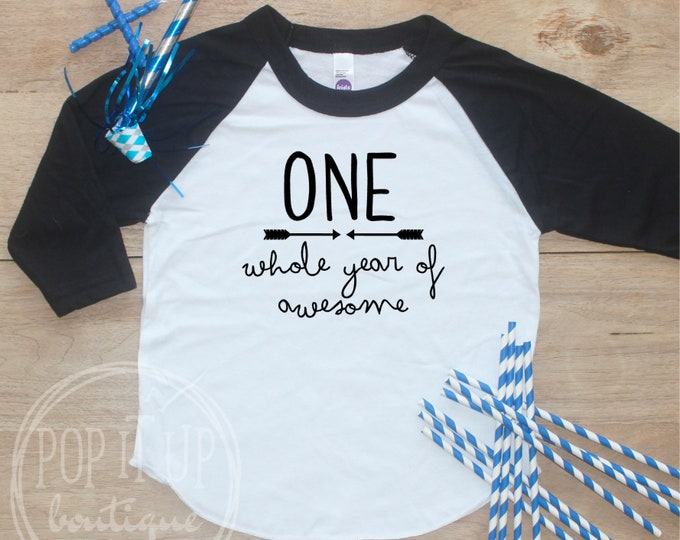 Birthday Boy Shirt / Baby Boy Clothes Whole Year Awesome 1 Year Old Outfit First TShirt 1st Cake Smash Outfit One Raglan Toddler 154
