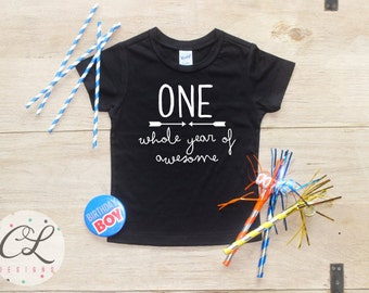 Birthday Boy Shirt / Baby Boy Clothes 1 Year Old Outfit First Birthday TShirt 1st One Awesome Cake Smash Outfit One Bodysuit Toddler 043
