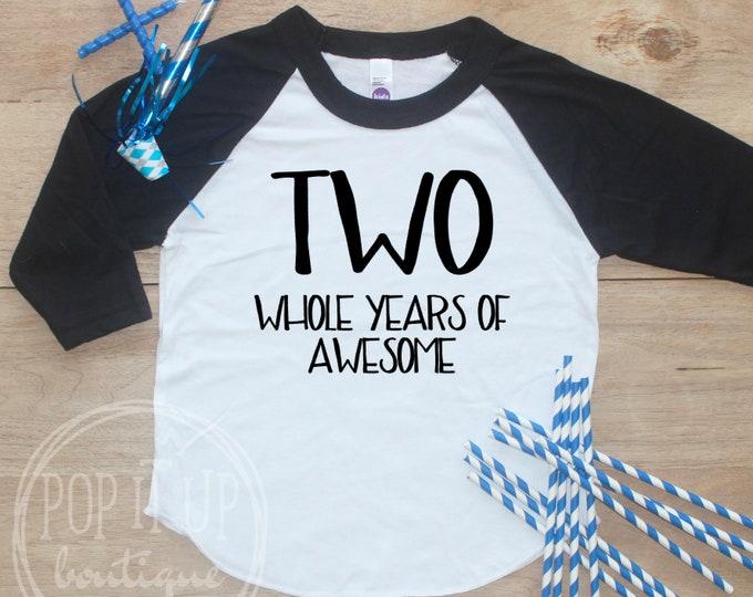 Birthday Boy Shirt / Baby Boy Clothes 2 Year Old Outfit Second Birthday TShirt 2nd Birthday Boy Outfit Birthday Party Two Raglan Toddler 041