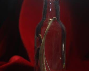Bottle of ribs.