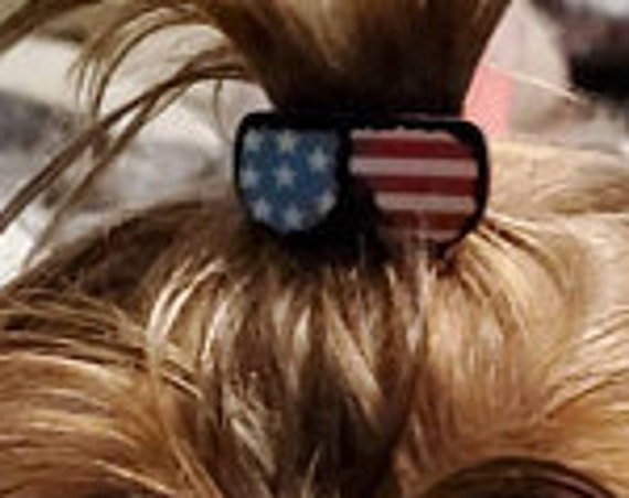 Dog hair clip TWO tiny American flag 4th of July sunglasses clip plastic barrette  (fb195)