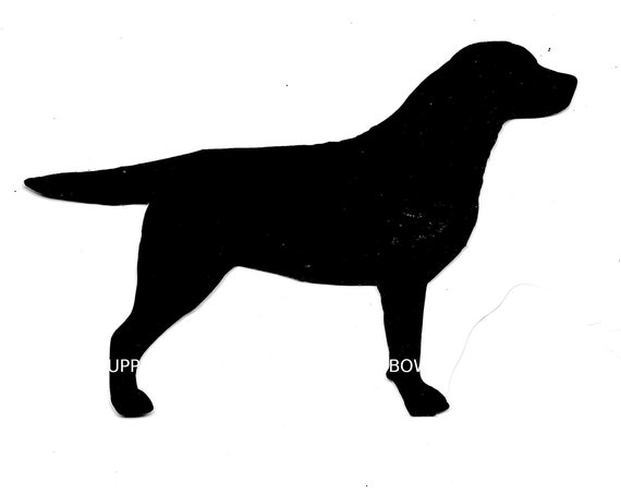 Labrador Retriever  vinyl car or wall  window decal cutout