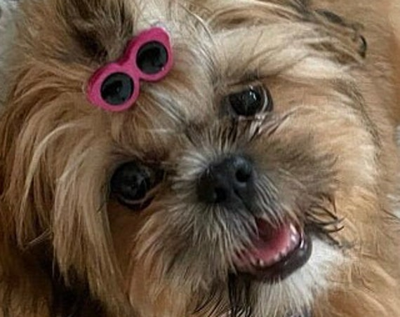 Puppy Bows ~ Dog bow sunglasses in  4 hot summer colors pet hair barrette clip ~USA seller