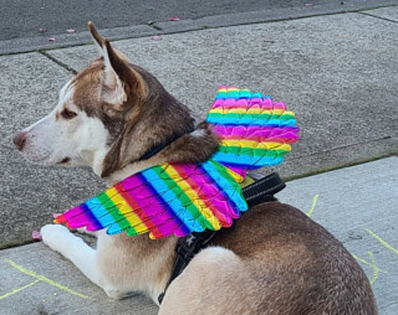 Unicorn wings for dogs puffy quilted  gold silver rainbow dog costume feather