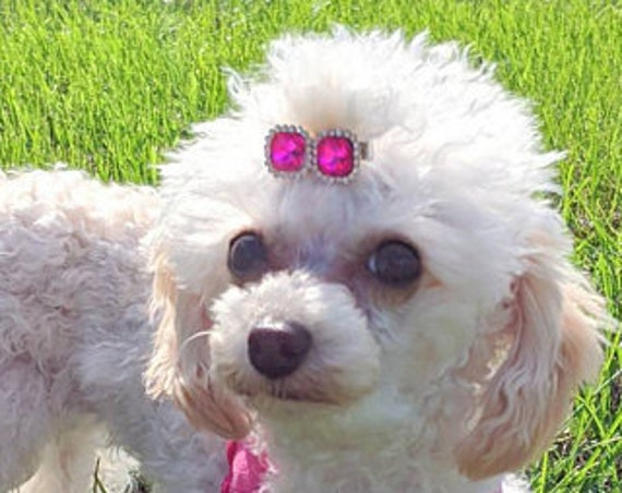 """Dog hair clip WEE super TINY 1"""" rhinestones pink blue crystal squares barrette 17 color choices!"""