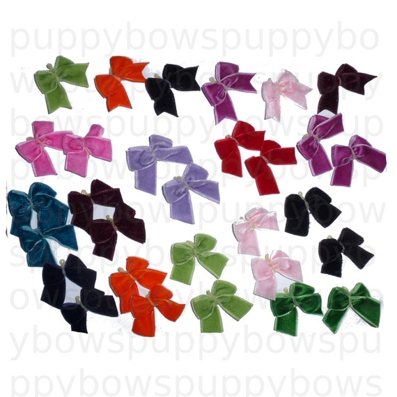 Puppy Bows ~ 30 posh velvet everyday dog grooming bows latex bands assorted colors medium or tiny