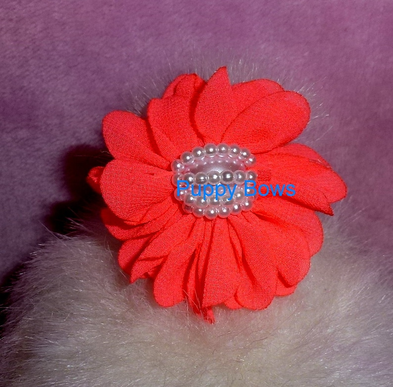 CLEARANCE ~ Shabby chic chiffon carnation flowers 12 colors PEARL centers grooming bow pet hair barrette fb102