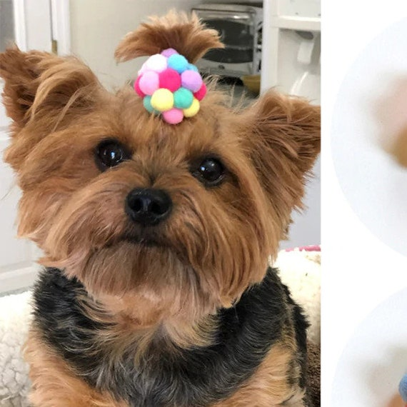 Puppy Bows ~ Multi color pom pom topknot ponytail dog hair bow many colors