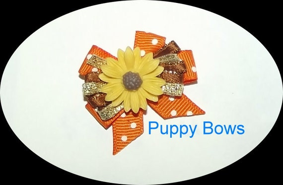 Puppy Bows ~Orange yellow SUNFLOWER wild loop dog bow  pet bands, hair clip or  barrette (fb123a)