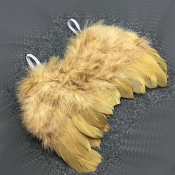 Valentine's day cupid angel wings solid gold dog costume feather FREE SHIPPING fit 5lb - 25lb