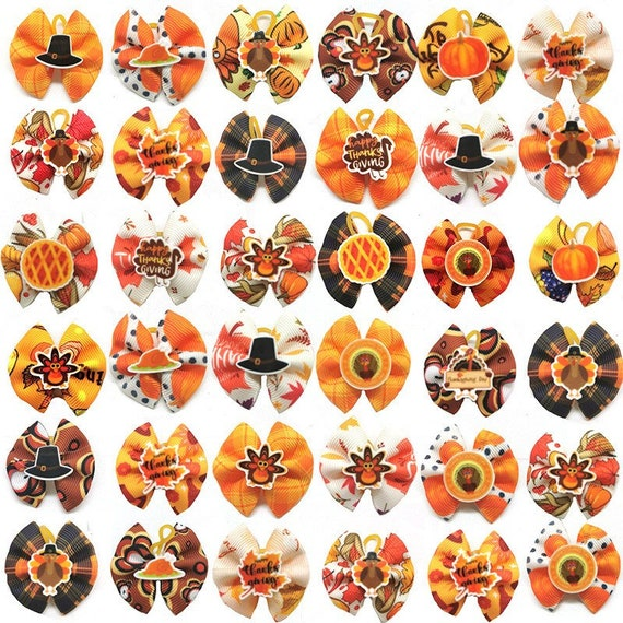 10 Thanksgiving Turkey, leaves fall autumn pumpkin everyday dog groomers grooming pet hair bows