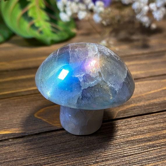 Aura Fluorite Mushroom